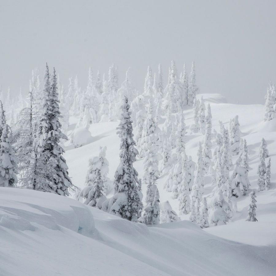 skiier on snowy ridge about to drop in