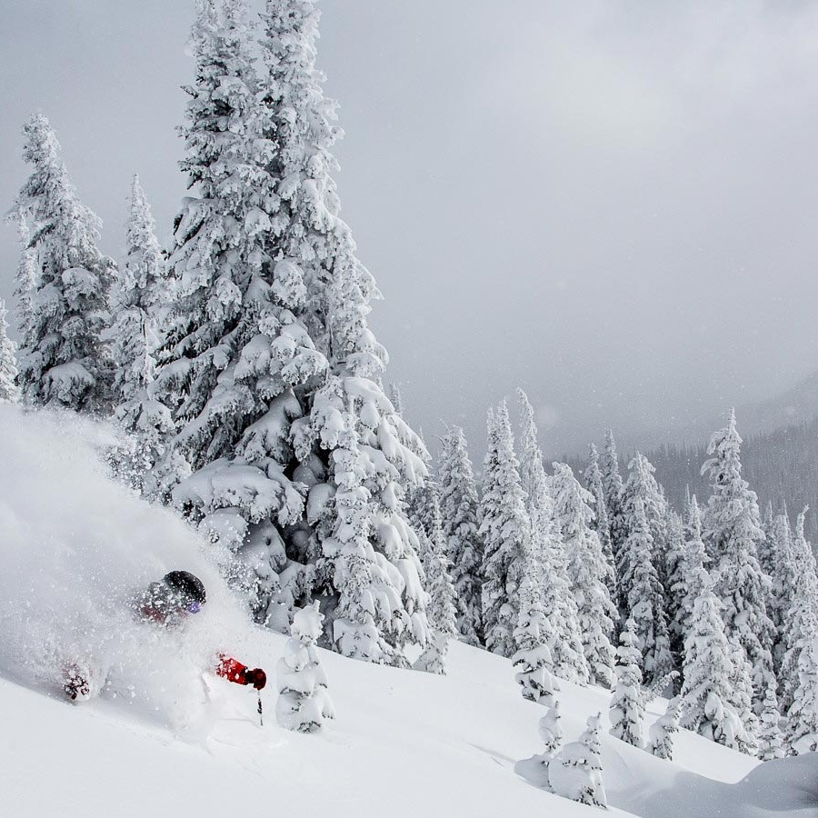 skiier in deep kootenay powder
