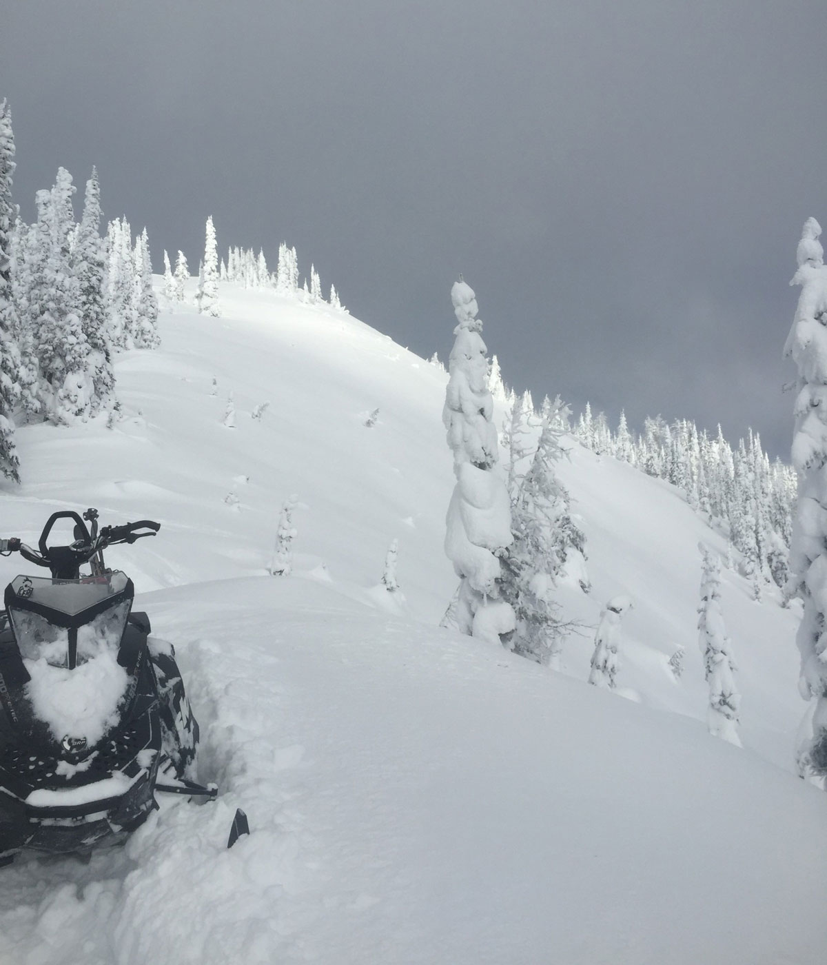 The final storm of the wave brought 55cm of snow to our heli skiing terrain