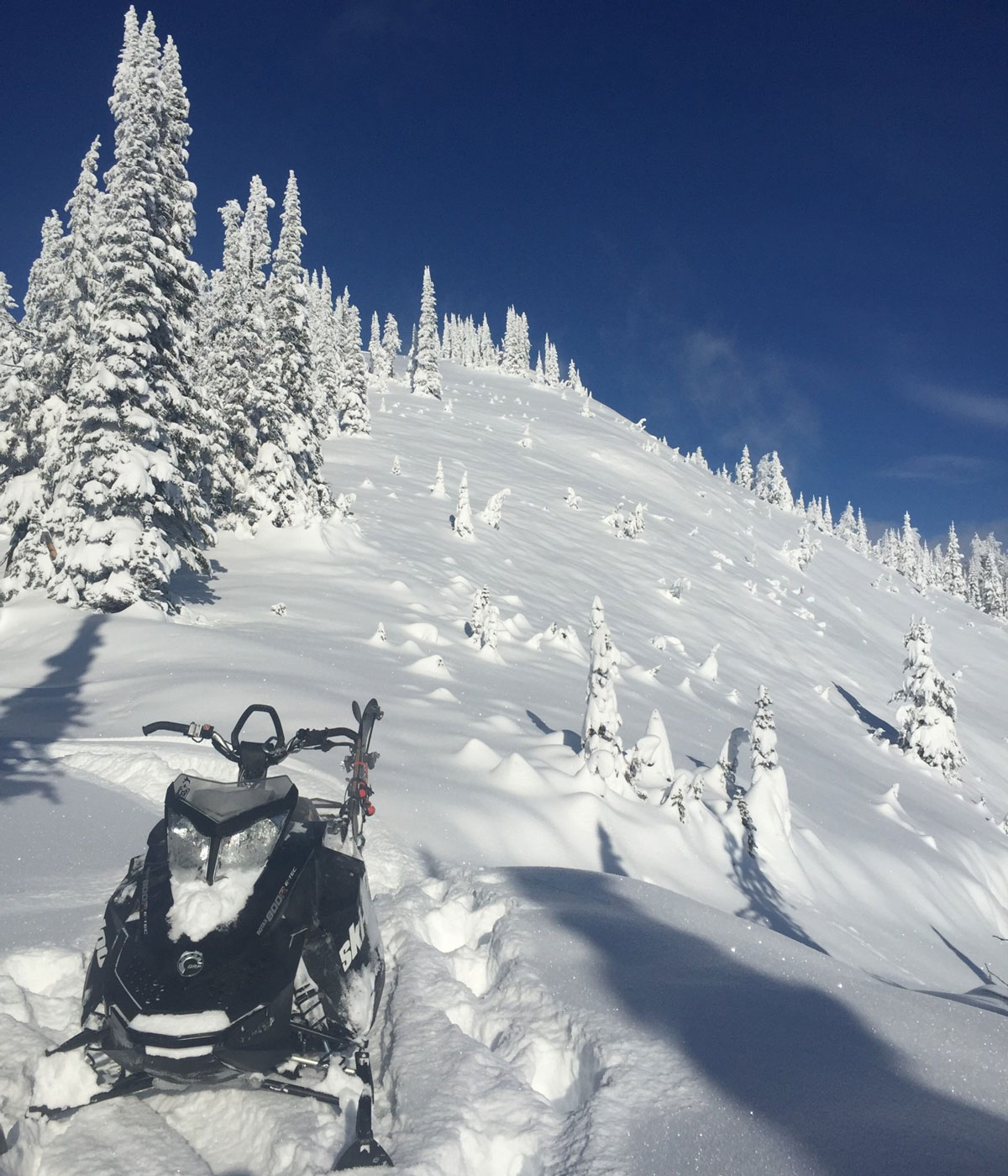 45 cm of fresh powder after the first big storm of the season in Kaslo, BC